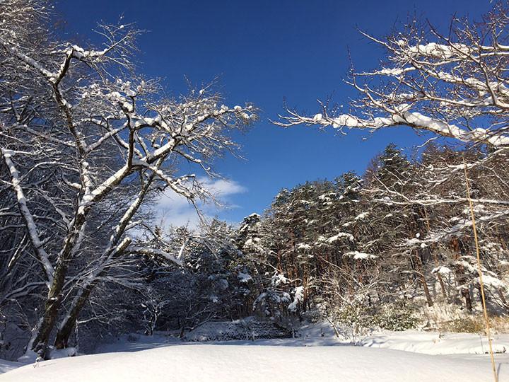 工房鈴蘭 冬の風景